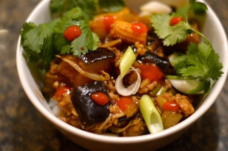 Ma Po Eggplant - Bachelors Test Kitchen